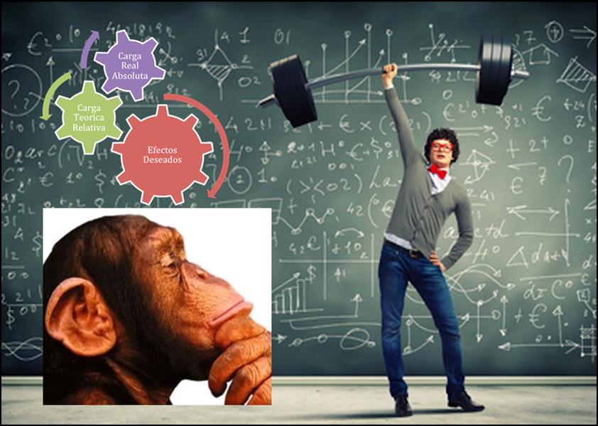 Entrenamiento Físico: Una disciplina científica