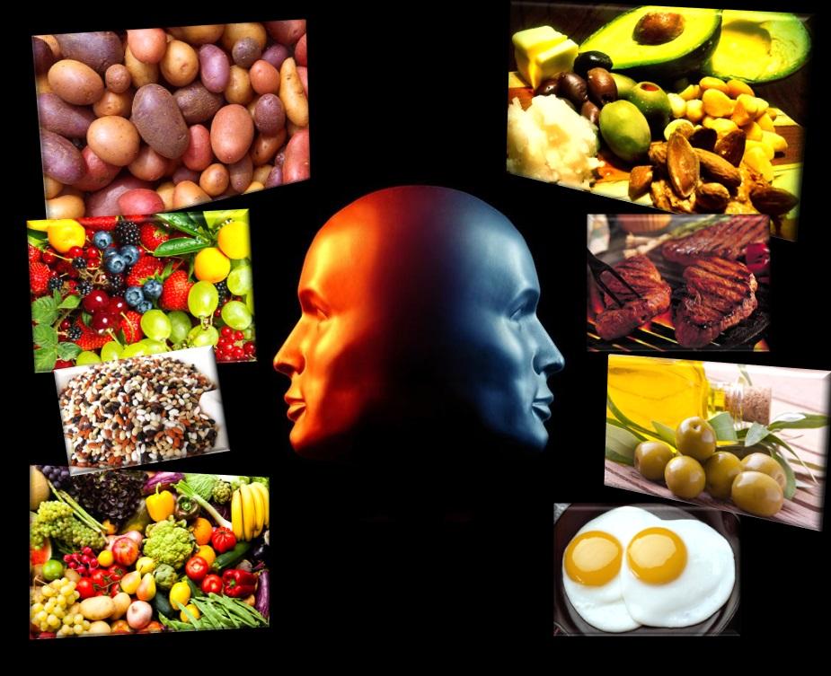 Las indecisiones mitocondriales en cuanto a utilización de nutrientes (octubre 2017)