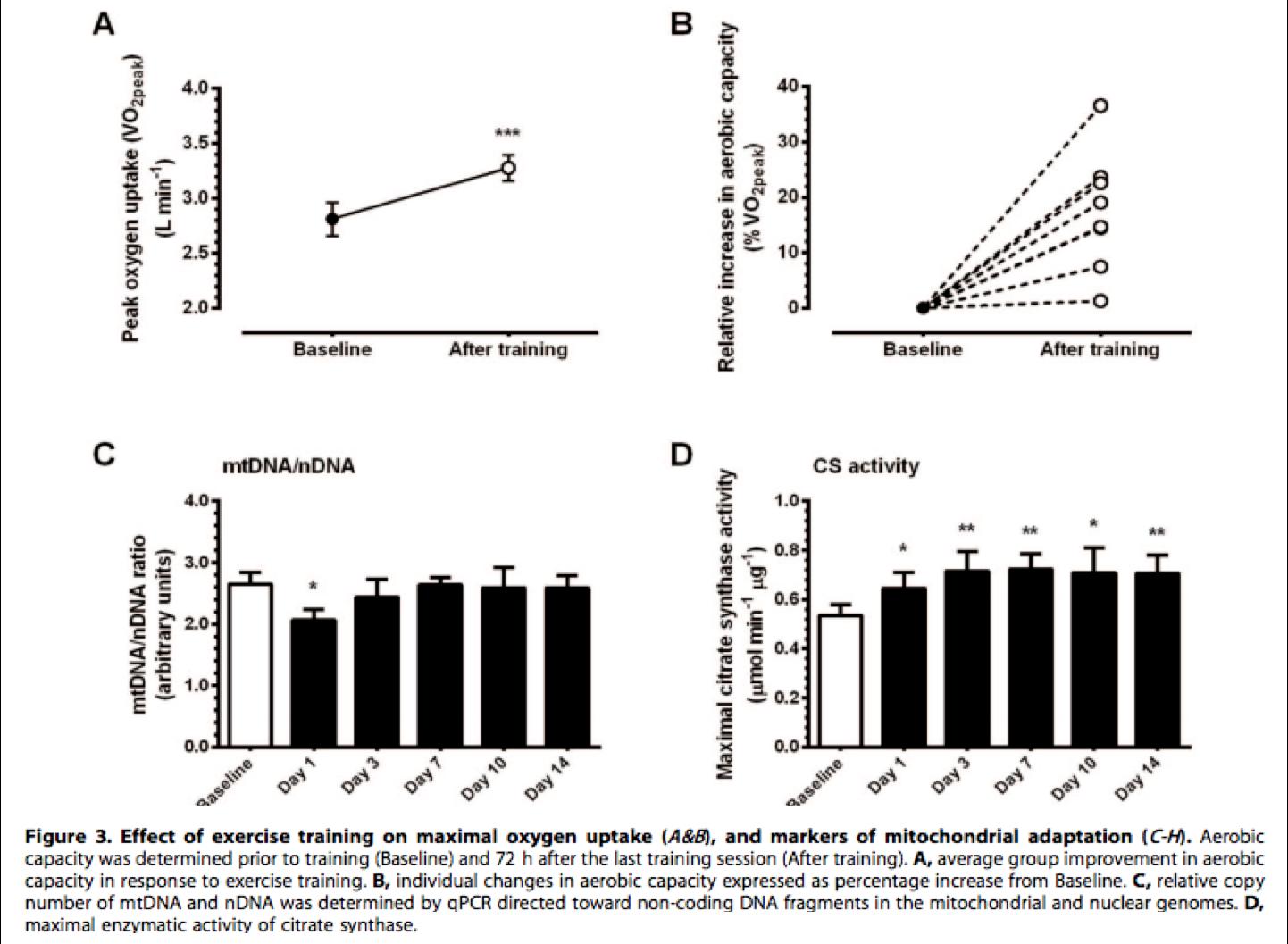 Adaptaciones en el territorio metabólico oxígeno-dependiente. Mirando las respuestas mitocondriales desde el HIIT.