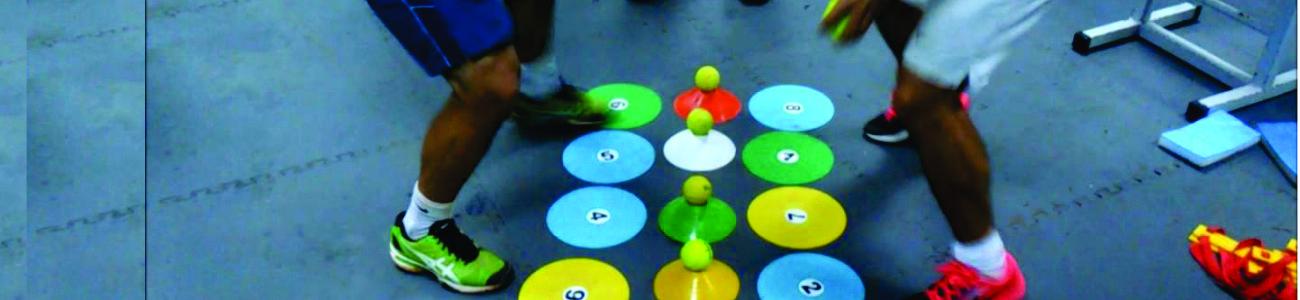 Neurociencias Aplicadas al Movimiento - Modelo de Intervención Multisensorial (MIMuS)