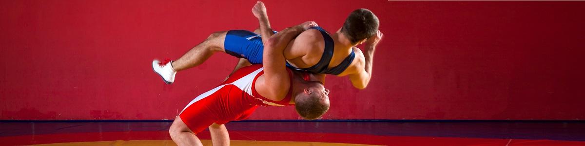 Curso de Introducción al Entrenamiento para Deportes de Combate