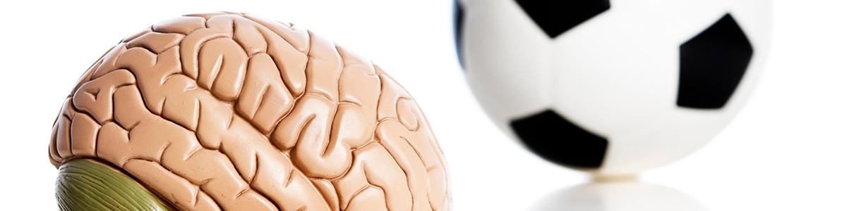 Curso de Neurociencia Aplicada a la Mejora del Rendimiento Deportivo