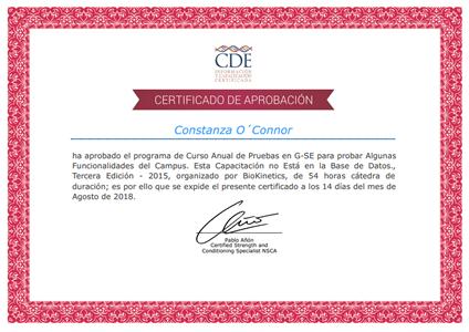 Certificado de Aprobación - Pablo Anón