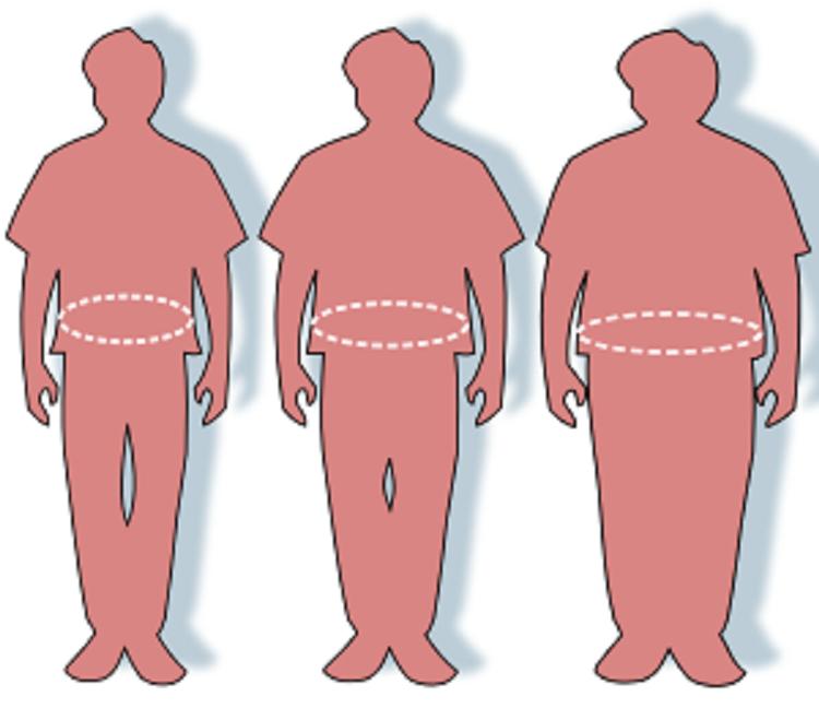 Variabilidad individual en la circunferencia de cintura y peso corporal en respuesta al ejercicio